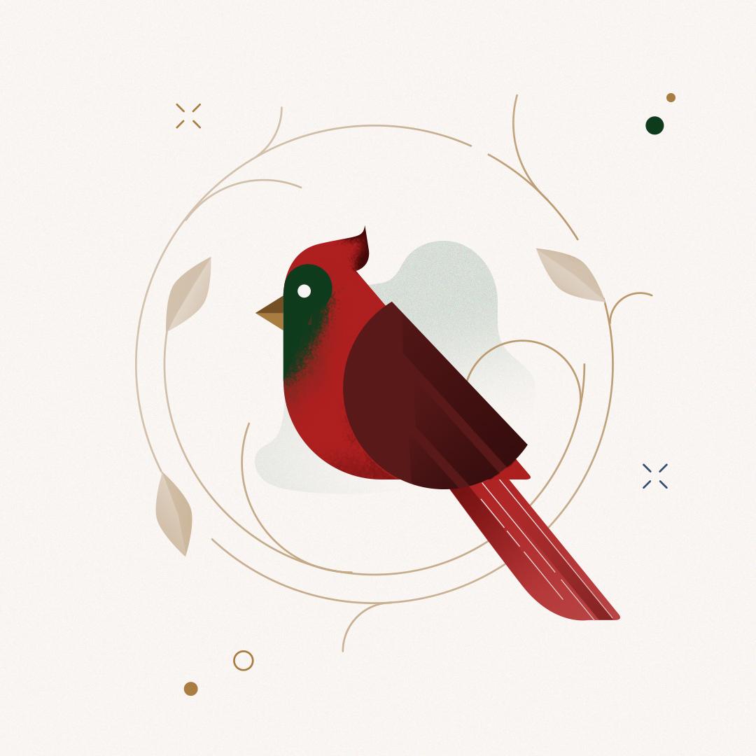 Christmas Bird illustration by Gelpi Design